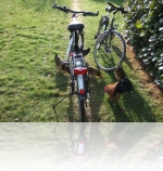 In den Elsen fietsen